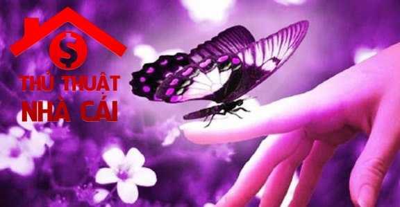 Nằm mơ thấy con bướm
