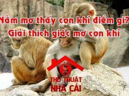 Nằm mơ thấy con khỉ là gì
