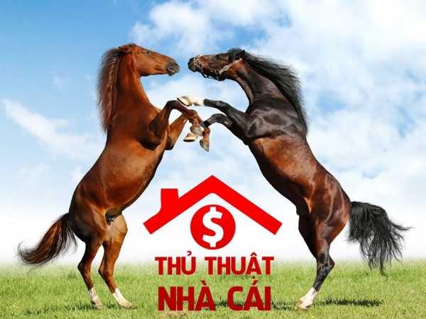 Mơ thấy ngựa là điềm gì? Giải thích giấc mơ thấy con ngựa