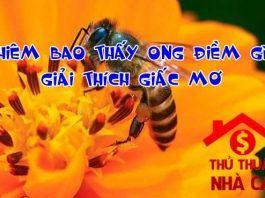 Nằm mơ thấy ong điềm gì